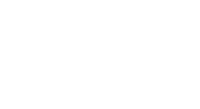 "White logo of stylized B-21 with text ""Rise of the raider"""