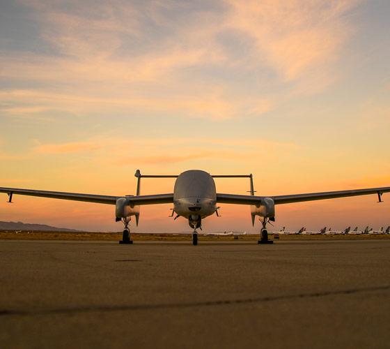 Firebird plane on tarmac at sunset