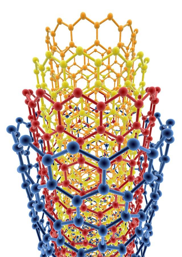 nested carbon nanotubes
