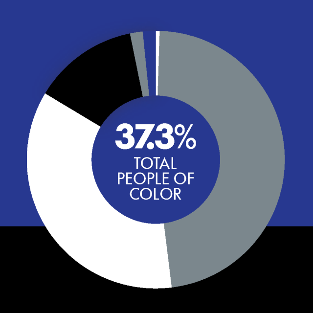 Pie chart showing the percentage of People of Color at Northrop Grumman