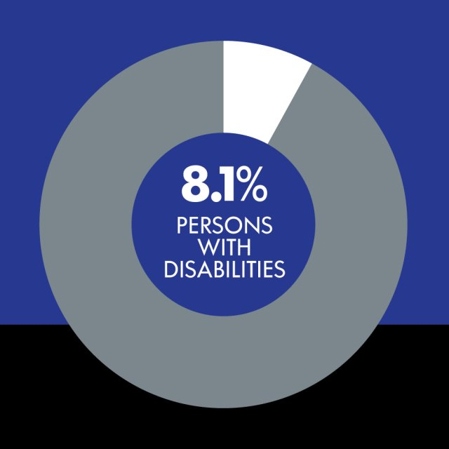 Pie chart showing percentage of Persons with Disabilities