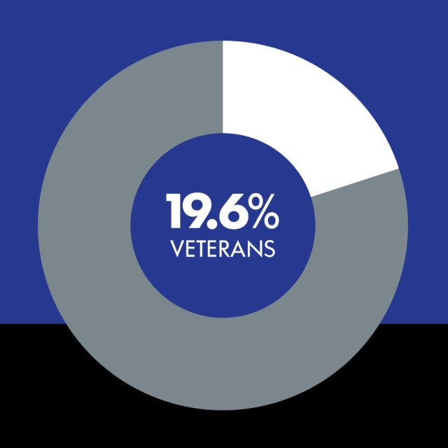Pie chart showing the percentage of veterans at Northrop Grumman