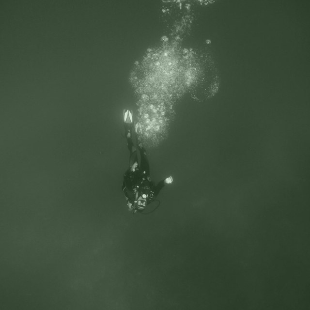 diver in murky waters