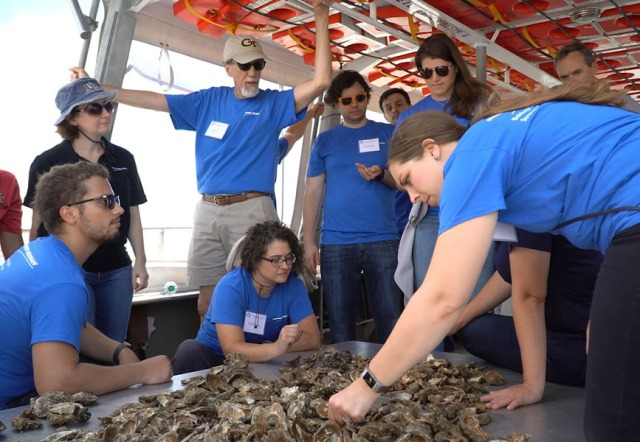 Employees in blue shirts examine oysters inside boat